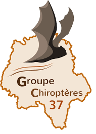 Groupe chiroptères 37